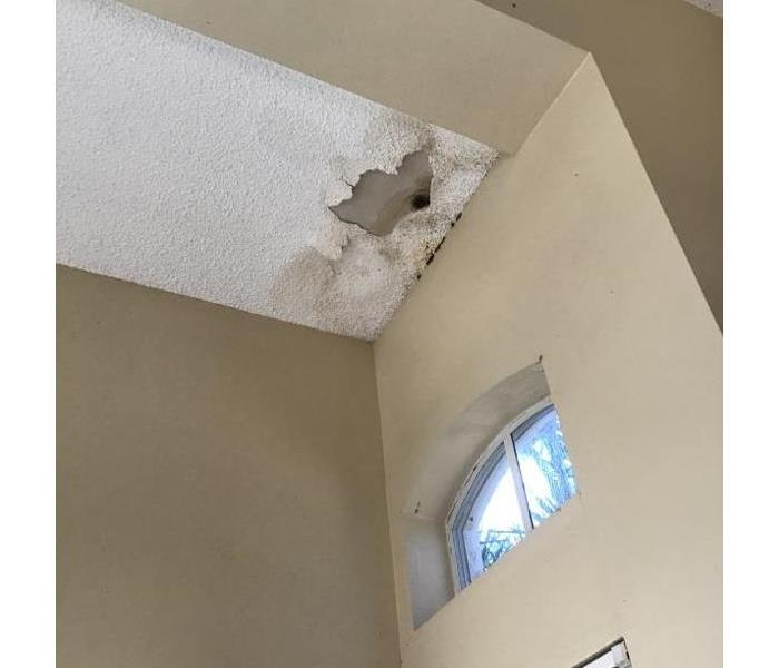 Roof leak causes water damage which then lead to mold Before