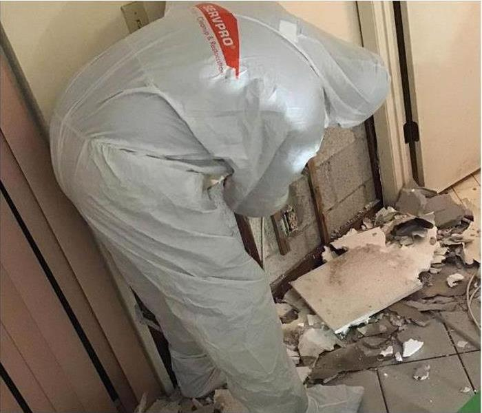 Worker using protective equipment while removing mold from a wall